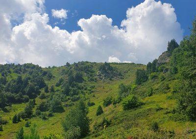 Комините Орлово гнездо Витоша