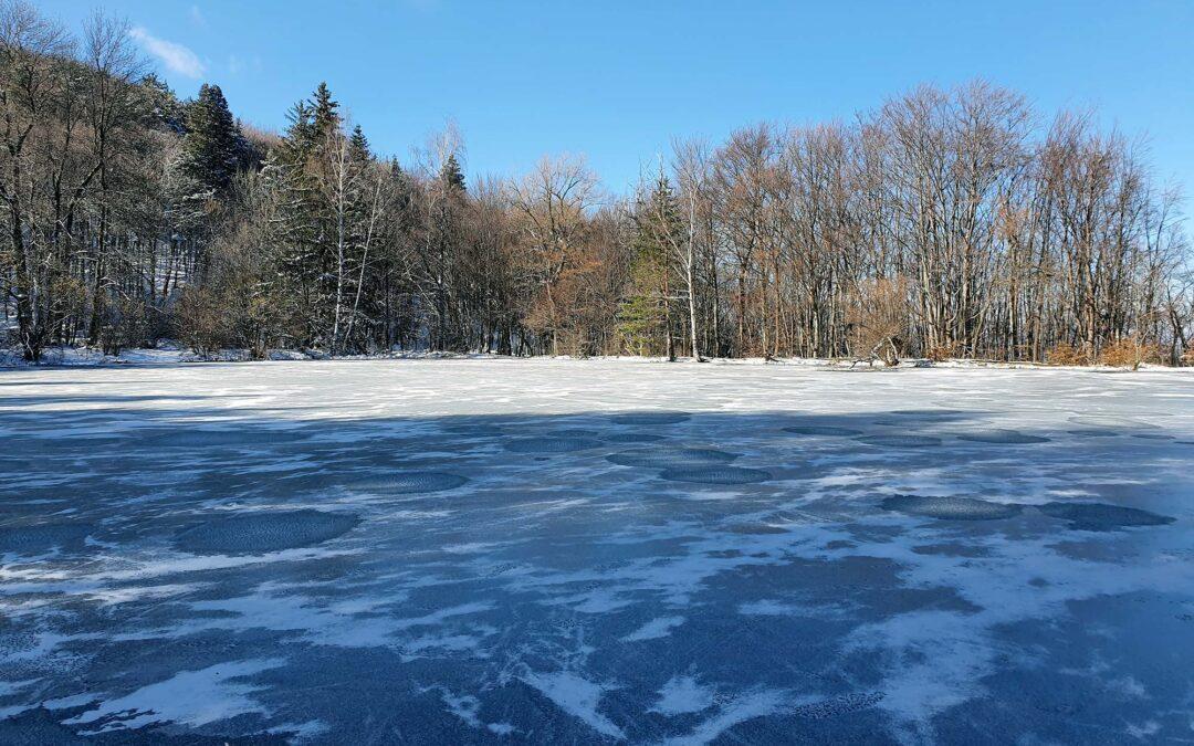Замръзнало Боянско езеро през зимата